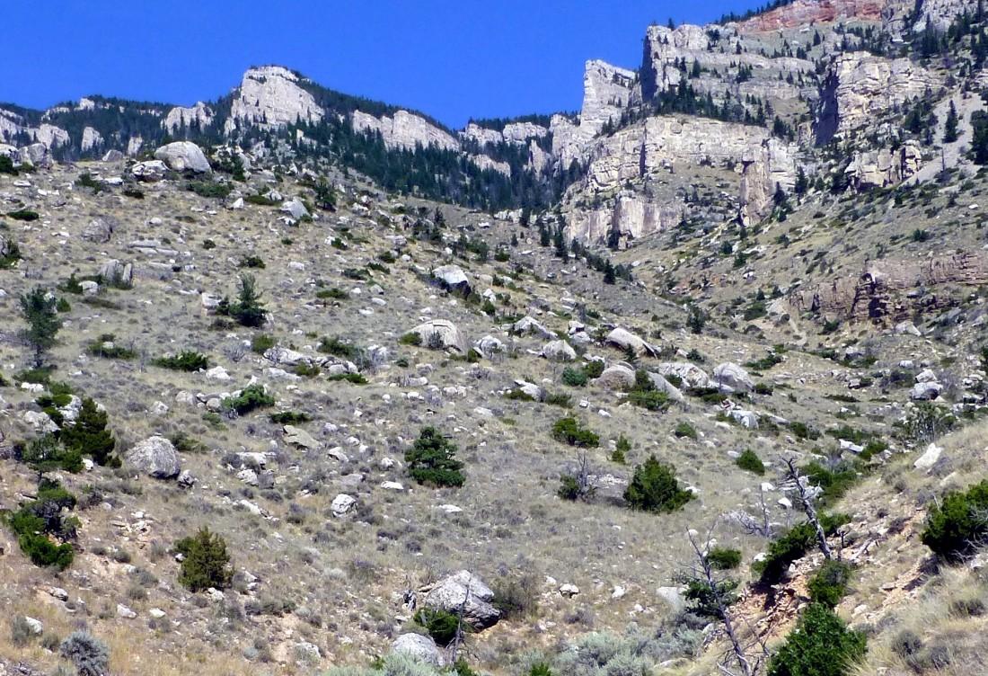 cody - Rattlesnake Mountain